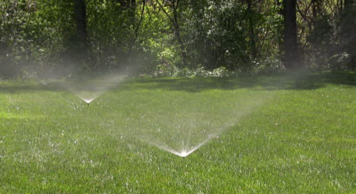 Grass sprinklers